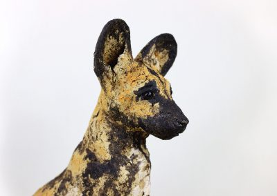 AFRICAN HUNTING DOG 3