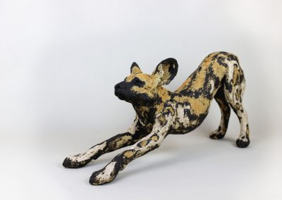 AFRICAN HUNTING DOG 4