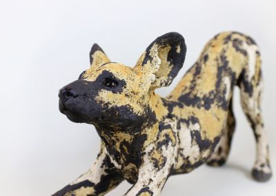 AFRICAN HUNTING DOG 5