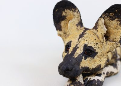 AFRICAN HUNTING DOG 6