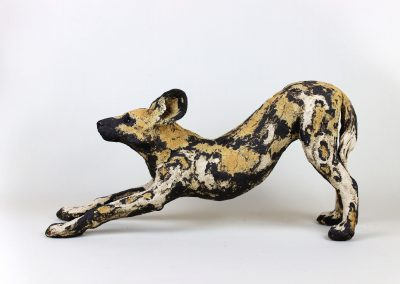 AFRICAN HUNTING DOG 9