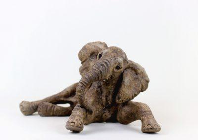 ELEPHANT BABY 1
