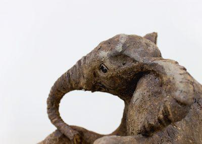 ELEPHANT BABY 2