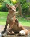 fox-2009